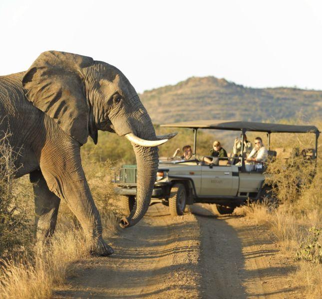 Rhulani Safari2